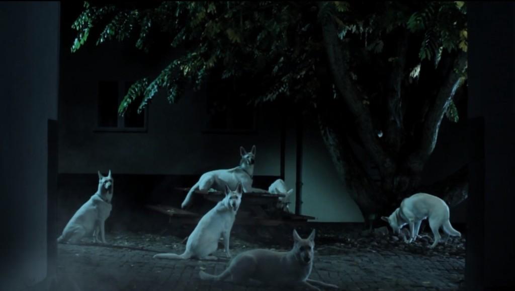 "FILM = psychological experiment. Tobias Gundorff Boesen: ""Ghost"" (interview – part 2)"